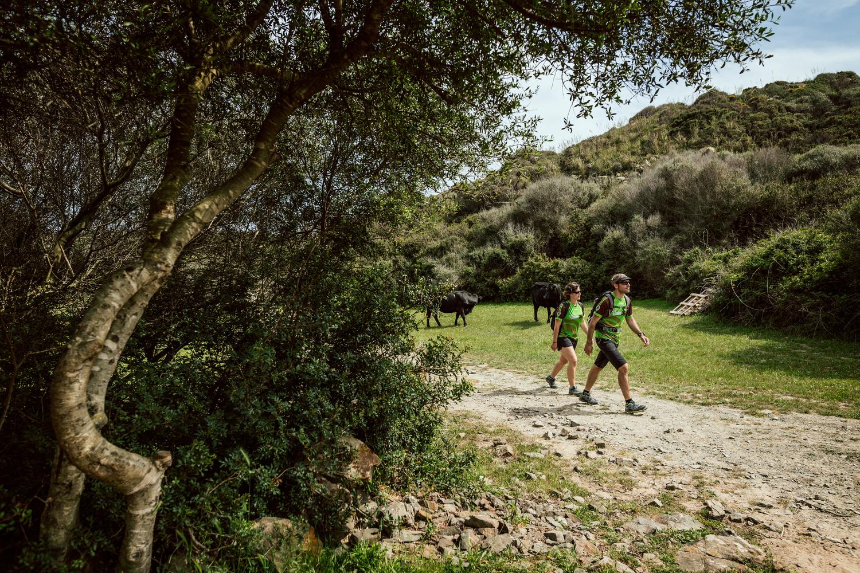 Zona de camps entre Favàritx i Pou d'en Caldes (Foto: Jordi Saragossa).